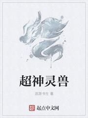 宁静小说网 超神灵兽