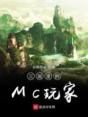 三国里的MC玩家小说阅读